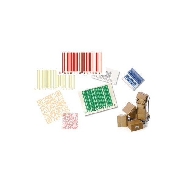 1900hSR-USB(2次元耐薬品性 カラーバーコードモデル 標準仕様SR)|barcode|04