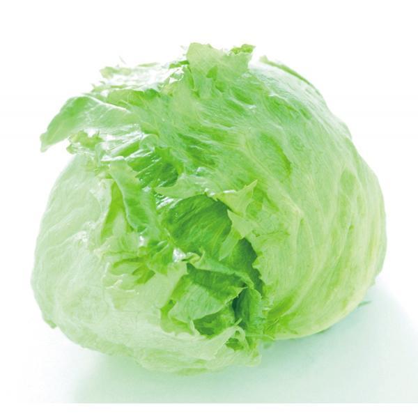 サラダスピナー Just right  野菜水切り器 グリーン C-8492 キッチン 調理器具 食洗機対応 パール金属 bargain-l 02