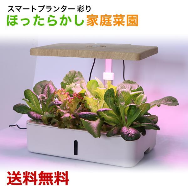 スマートプランター 高機能プランター 家庭菜園 栽培キット LED ファン モーターポンプ 自動水やり 土不要 フルーツ 野菜 無農薬 送料無料