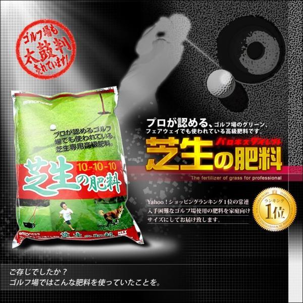 芝生 肥料 バロネス 芝生の肥料 5kg入り 緩効性化成肥料 細粒タイプ|baroness