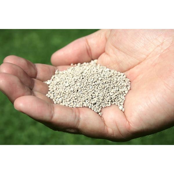 芝生 肥料 バロネス 芝生の肥料 5kg入り 緩効性化成肥料 細粒タイプ|baroness|05