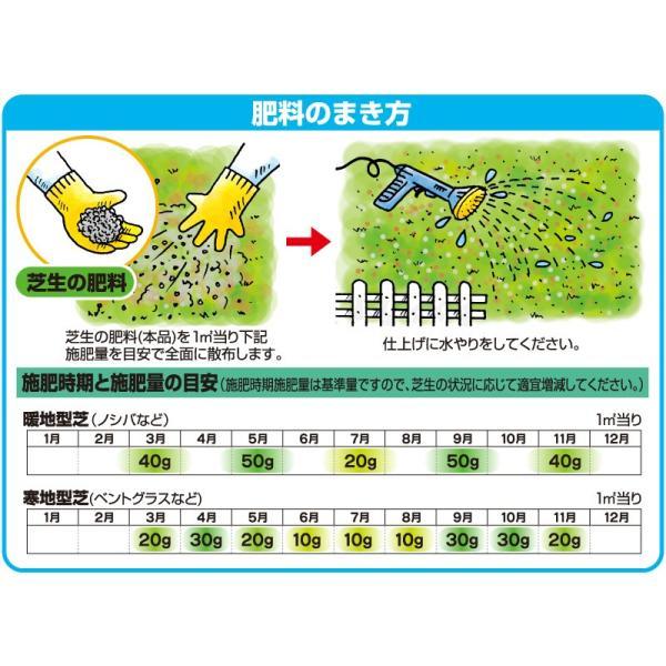 芝生 肥料 バロネス 芝生の肥料 5kg入り 緩効性化成肥料 細粒タイプ|baroness|07