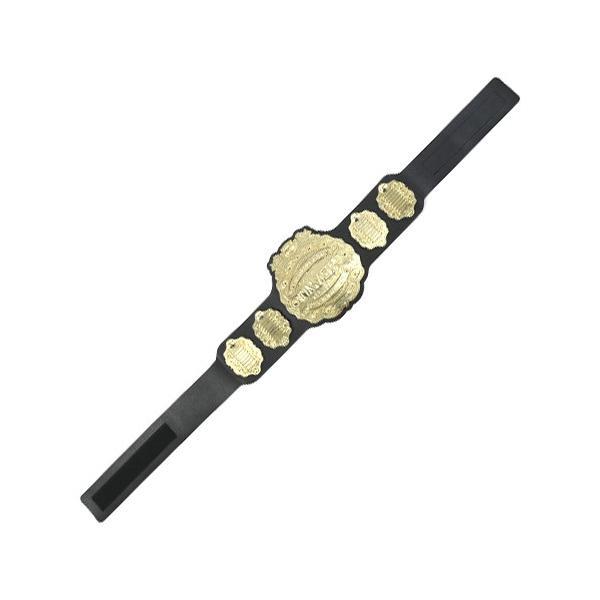 新日本プロレス NJPW 4代目IWGPヘビー級 プラスチックチャンピオンベルト(2018)|bdrop