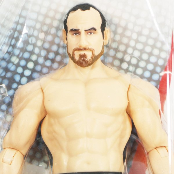 WWE Mattel Basic90 Aiden English(エイデン・イングリッシュ)|bdrop|02