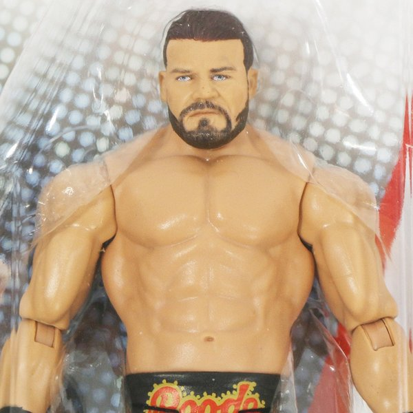 WWE Mattel Basic96 Bobby Roode(ボビー・ルード)|bdrop|02
