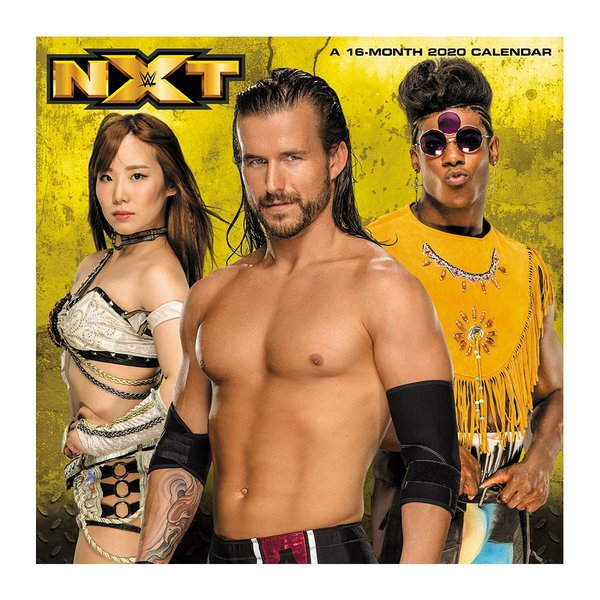 WWE NXT Superstars 2020年壁掛けカレンダー|bdrop