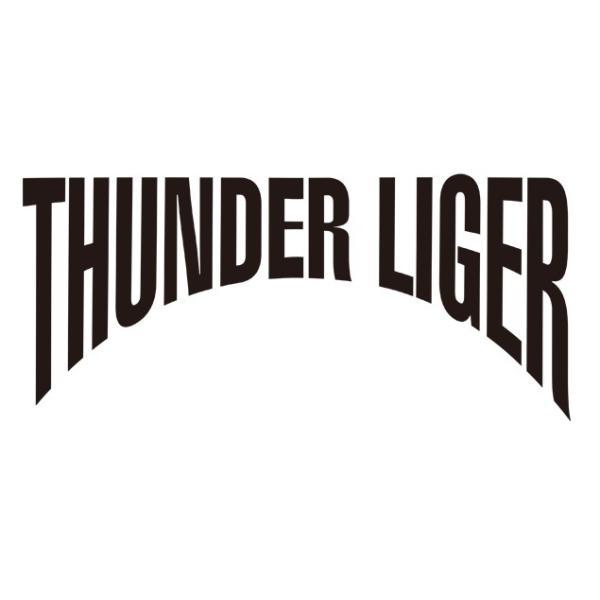 新日本プロレス NJPW 獣神サンダー・ライガー「WORLD LEGEND」Tシャツ(2018)|bdrop|04