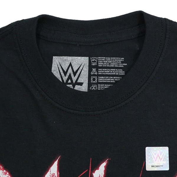 【WWE SummerSale】WWE Matt Hardy & Bray Wyatt(マット・ハーディ/ブレイ・ワイアット) Deleters of Worlds ブラックTシャツ|bdrop|06