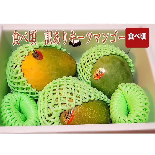 沖縄産 キーツマンゴー 食べ頃 訳あり約2キロ 約3個 ご家庭用 全国送料無料