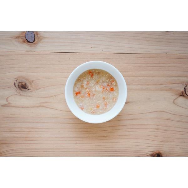 離乳食 無添加 ベビーフード オーガニック 有機無農薬 野菜 天然だし BabyOrgente ニンジンとタマネギおじやタイプ 1袋|beans-japan|02