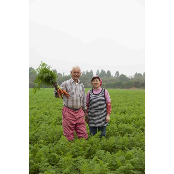 離乳食 無添加 ベビーフード オーガニック 有機無農薬 野菜 天然だし BabyOrgente ニンジンとタマネギおじやタイプ 1袋|beans-japan|04