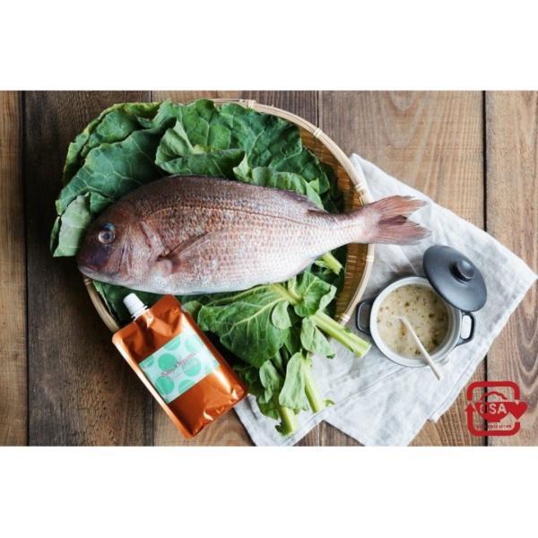 【 新発売 】離乳食 無添加 オーガニック 有機無農薬 野菜 天然だし BabyOrgente 鯛&ケールおじや 1袋 beans-japan