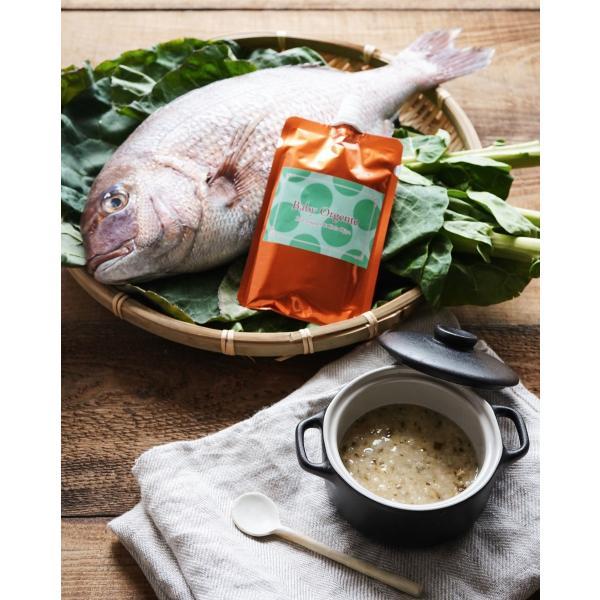 【 新発売 】離乳食 無添加 オーガニック 有機無農薬 野菜 天然だし BabyOrgente 鯛&ケールおじや 1袋 beans-japan 02