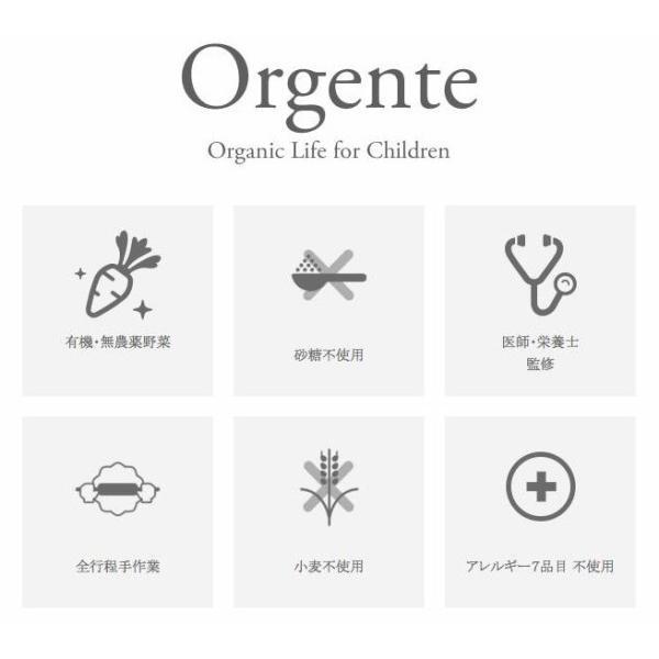 子供用 無添加 お菓子 砂糖不使用 オーガニック 有機無農薬 野菜 クッキー Orgente タンパク質 タイプ 1箱|beans-japan|03
