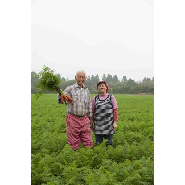 【 新商品・1袋プレゼント&送料無料 】 有機無農薬のお野菜と手仕込み天然だしの無添加離乳食 初期から後期 BabyOrgente Cセット|beans-japan|04