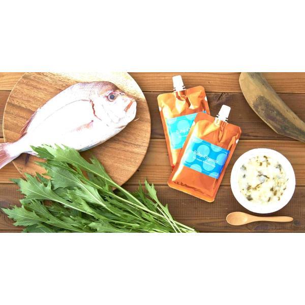 【 新商品・1袋プレゼント&送料無料 】 有機無農薬のお野菜と手仕込み天然だしの無添加離乳食 初期から後期 BabyOrgente Cセット|beans-japan|08