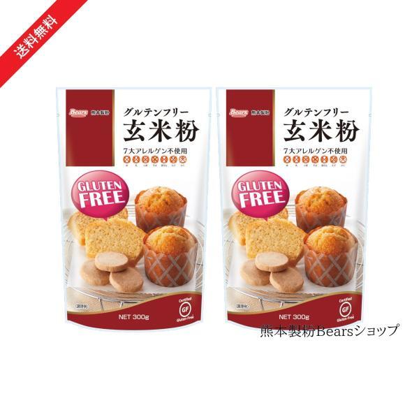 【送料無料】 グルテンフリー玄米粉 300g×2袋