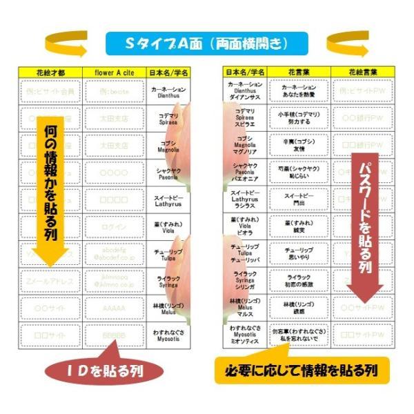 紙芸パス花お得S(両面)|beciteapps|03