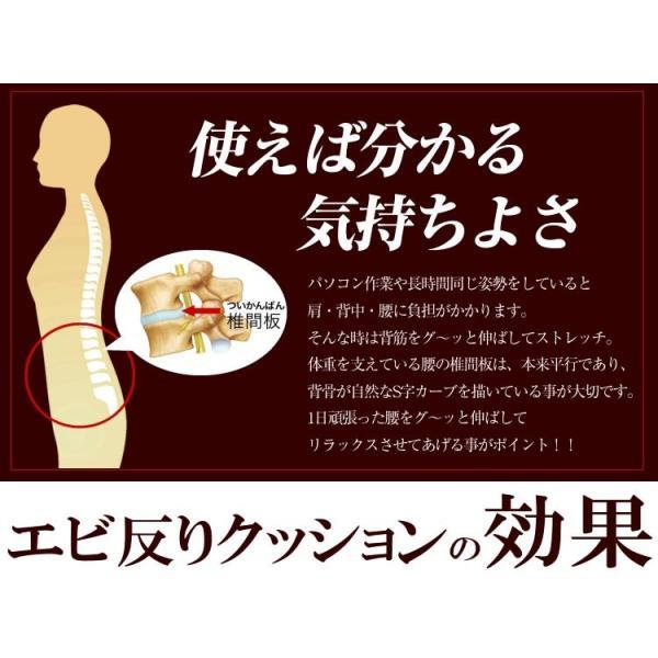 背中ストレッチクッション 寝返り防止クッション 体位変換 ウレタン 三角 アーチ エビ反りクッション 腰枕|bedandmat|05