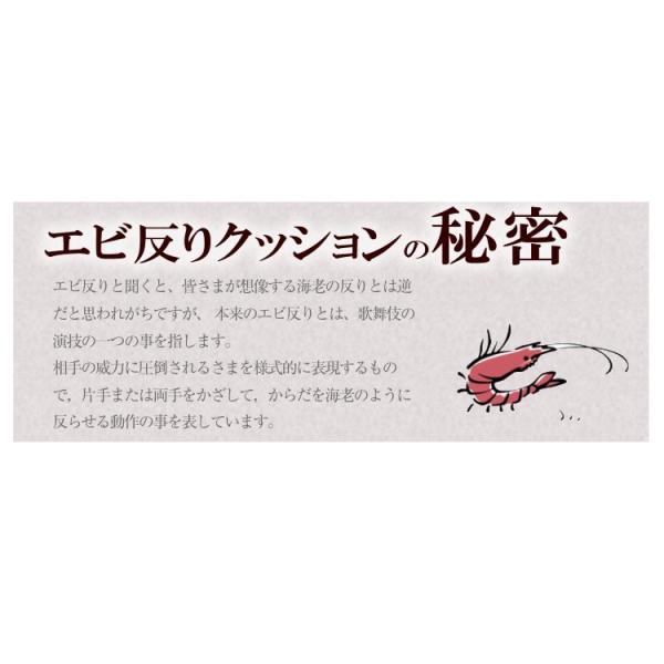 背中ストレッチクッション 寝返り防止クッション 体位変換 ウレタン 三角 アーチ エビ反りクッション 腰枕|bedandmat|08