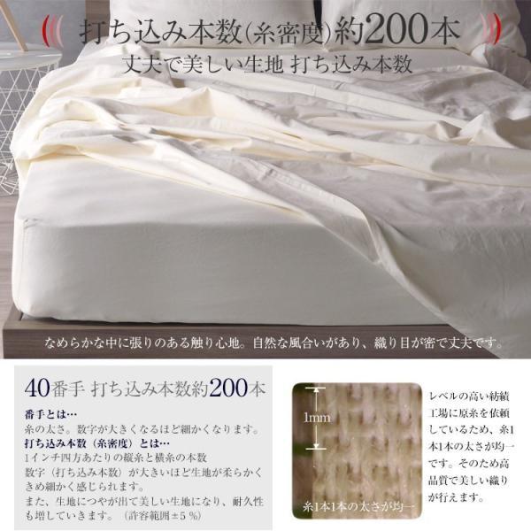 ボックスシーツ ファミリーサイズ 綿100% シングル+セミダブル ベッド用 マットレスカバー 2台用 選べるマチ幅 ゴム留めタイプ デイリーコレクション G01|bedandmat|11