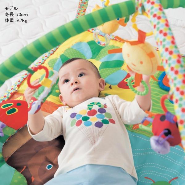 おもちゃ 知育玩具 アクティビティプレイジム カラー|bellemaison|04