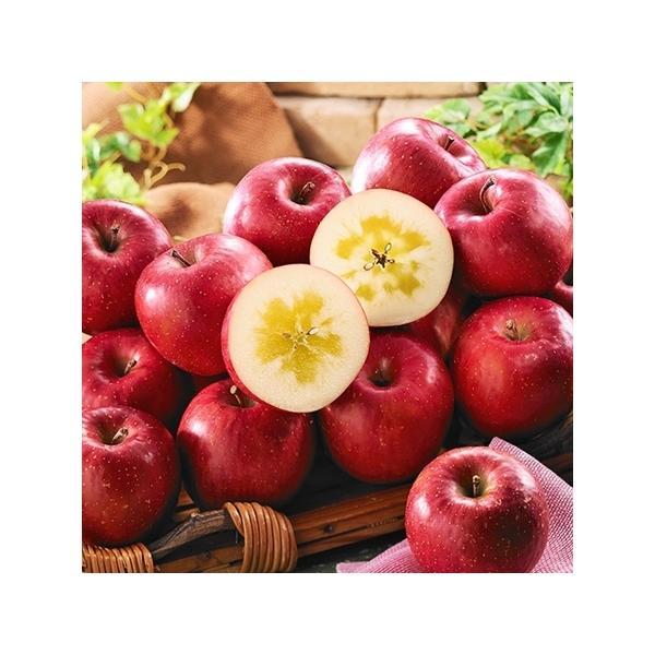 フルーツ りんご 果物 青森県産 蜜入り サンふじ りんご 3kg 11月下旬より順次出荷 お歳暮 御歳暮 ギフト 贈り物 送料無料