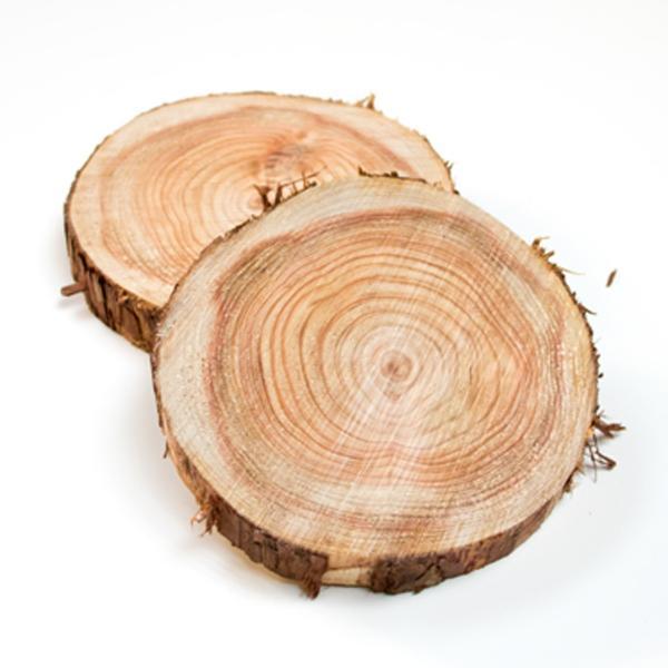 丸太の輪切り  Sサイズ2枚セット 約直径18x厚さ3cm|beniyamokuzaicom|02