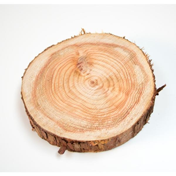 丸太の輪切り  Sサイズ2枚セット 約直径18x厚さ3cm|beniyamokuzaicom|03