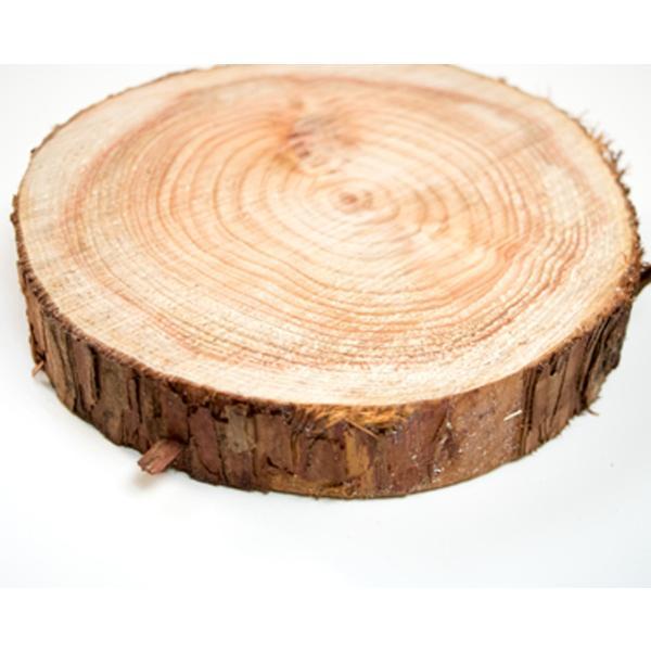 丸太の輪切り  Sサイズ2枚セット 約直径18x厚さ3cm|beniyamokuzaicom|04
