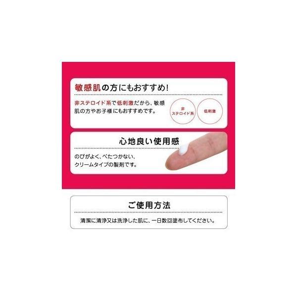 【第2類医薬品】キルカミン HPクリーム 50g あすつく対応|benkyoudou|07