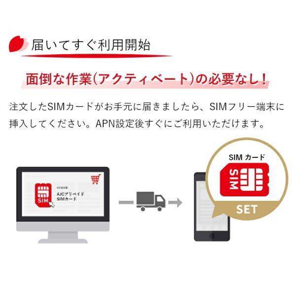 SIMカード 日本国内用 2GB データ専用 プリペイド nano SIM カード Docomo 4G LTE/3G  有効期限2018年4月30日 全日通 AJC 送料無料 あすつく|bespo|02