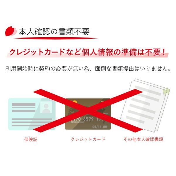 SIMカード 日本国内用 2GB データ専用 プリペイド nano SIM カード Docomo 4G LTE/3G  有効期限2018年4月30日 全日通 AJC 送料無料 あすつく|bespo|04