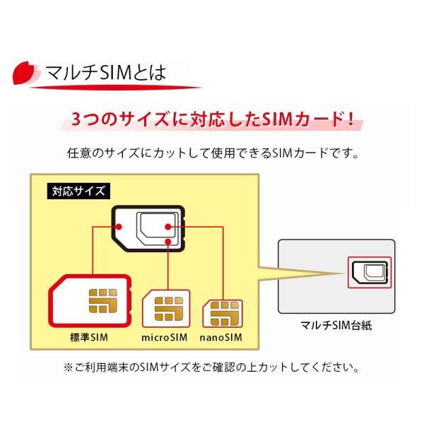 SIMカード 日本国内用 2GB データ専用 プリペイド nano SIM カード Docomo 4G LTE/3G  利用期限2018年8月31日 全日通 AJC 送料無料 あすつく bespo 07