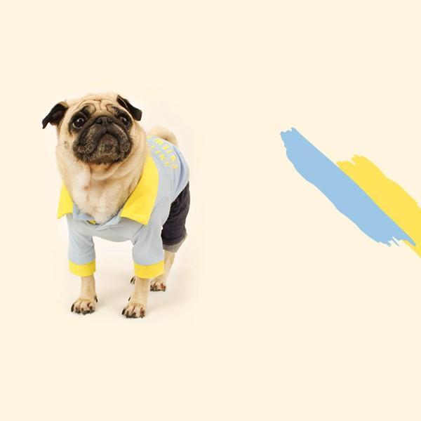 エンボスプリント ツートン ポロシャツ     S,SM,M,L,XL,XXL 犬 服 犬の服 ドッグウェア ポロ ポロT ポロシャツ Tシャツ 綿100%|best-friends|08