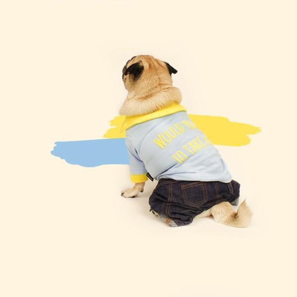 エンボスプリント ツートン ポロシャツ     S,SM,M,L,XL,XXL 犬 服 犬の服 ドッグウェア ポロ ポロT ポロシャツ Tシャツ 綿100%|best-friends|09