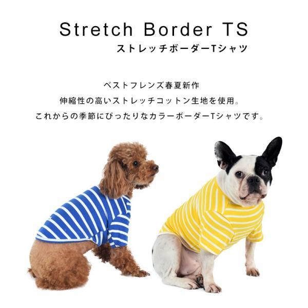 ストレッチボーダーTS      犬 服 犬の服 ドッグウェア Tシャツ ボーダー 薄手 コットン 綿 生地 伸縮 伸びる シンプル|best-friends|02