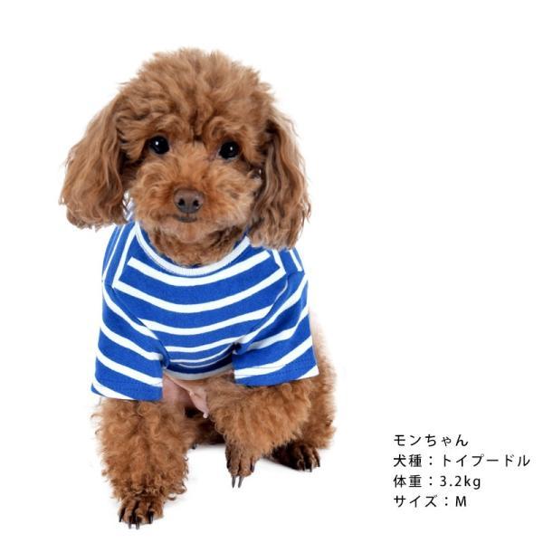 ストレッチボーダーTS      犬 服 犬の服 ドッグウェア Tシャツ ボーダー 薄手 コットン 綿 生地 伸縮 伸びる シンプル|best-friends|04