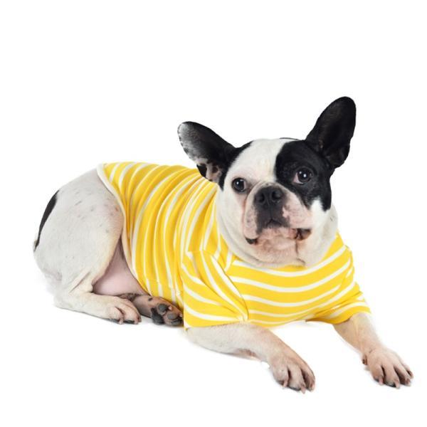 ストレッチボーダーTS      犬 服 犬の服 ドッグウェア Tシャツ ボーダー 薄手 コットン 綿 生地 伸縮 伸びる シンプル|best-friends|07