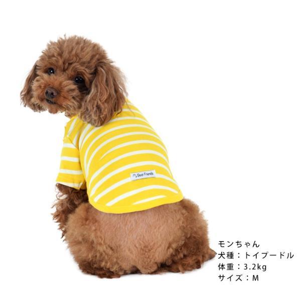 ストレッチボーダーTS      犬 服 犬の服 ドッグウェア Tシャツ ボーダー 薄手 コットン 綿 生地 伸縮 伸びる シンプル|best-friends|08