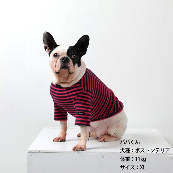 BF ボーダーTS   犬 服 犬の服 ドッグウェア Tシャツ ボーダー コットン 綿 生地 伸縮 伸びる シンプル|best-friends|03