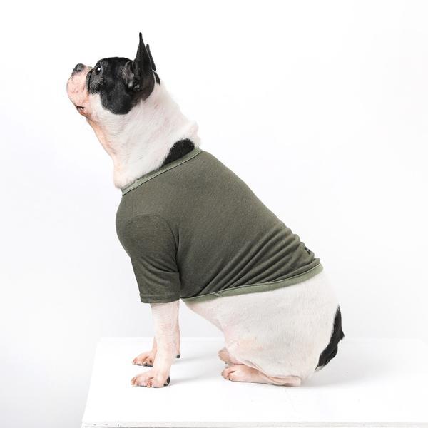 BF コットンカーキTS       犬 服 犬の服 ドッグウェア Tシャツ シンプル ライン  薄手 コットン 綿 生地 伸縮 伸びる 無地|best-friends|08