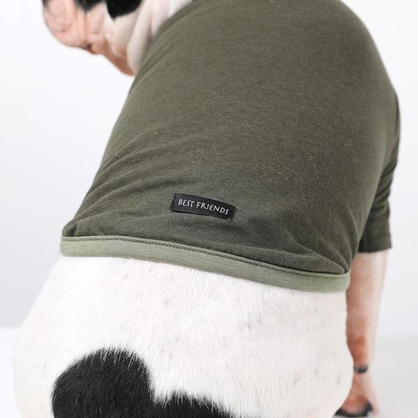 BF コットンカーキTS       犬 服 犬の服 ドッグウェア Tシャツ シンプル ライン  薄手 コットン 綿 生地 伸縮 伸びる 無地|best-friends|09