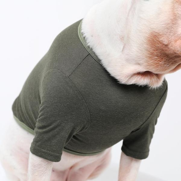 BF コットンカーキTS       犬 服 犬の服 ドッグウェア Tシャツ シンプル ライン  薄手 コットン 綿 生地 伸縮 伸びる 無地|best-friends|10