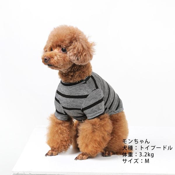 BF ボーダーグレーTシャツ       犬 服 犬の服 ドッグウェア Tシャツ シンプル ライン  薄手 生地 伸縮 伸びる コットン 綿100% ボーダー|best-friends|02