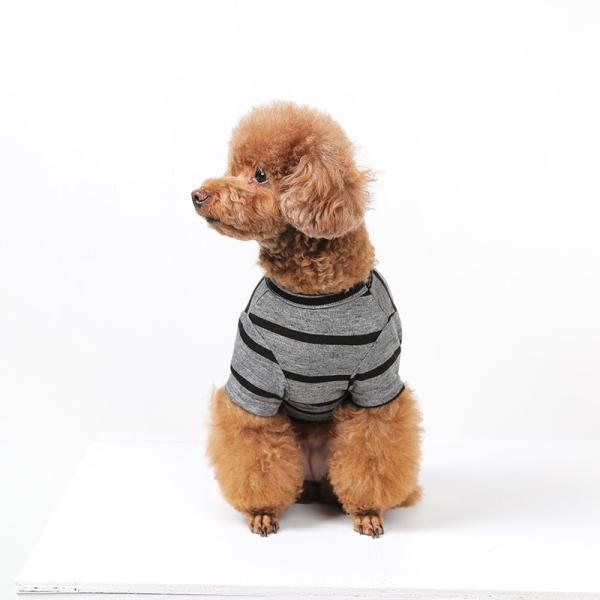 BF ボーダーグレーTシャツ       犬 服 犬の服 ドッグウェア Tシャツ シンプル ライン  薄手 生地 伸縮 伸びる コットン 綿100% ボーダー|best-friends|04