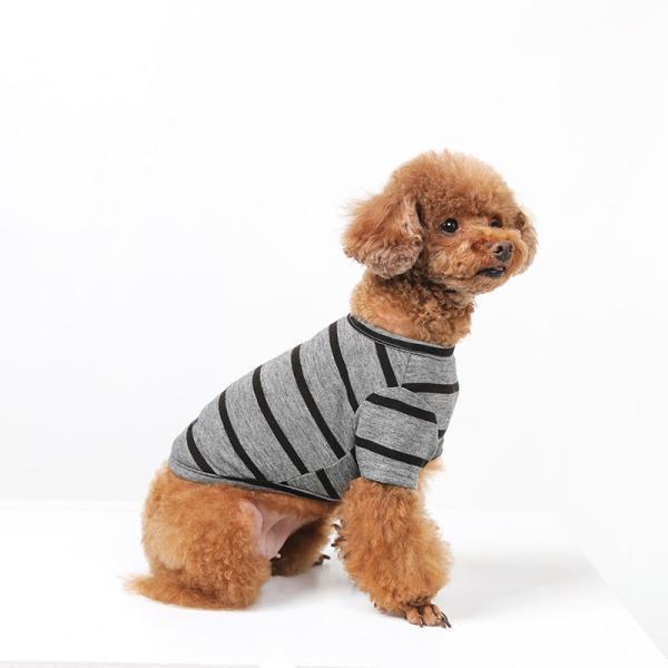 BF ボーダーグレーTシャツ       犬 服 犬の服 ドッグウェア Tシャツ シンプル ライン  薄手 生地 伸縮 伸びる コットン 綿100% ボーダー|best-friends|05