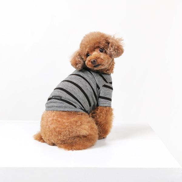 BF ボーダーグレーTシャツ       犬 服 犬の服 ドッグウェア Tシャツ シンプル ライン  薄手 生地 伸縮 伸びる コットン 綿100% ボーダー|best-friends|06