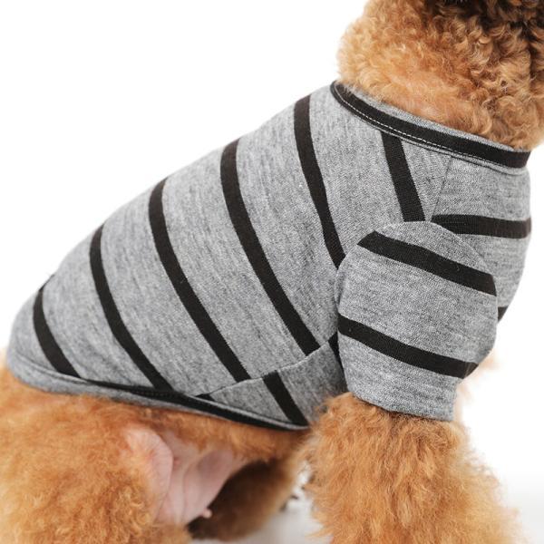 BF ボーダーグレーTシャツ       犬 服 犬の服 ドッグウェア Tシャツ シンプル ライン  薄手 生地 伸縮 伸びる コットン 綿100% ボーダー|best-friends|08