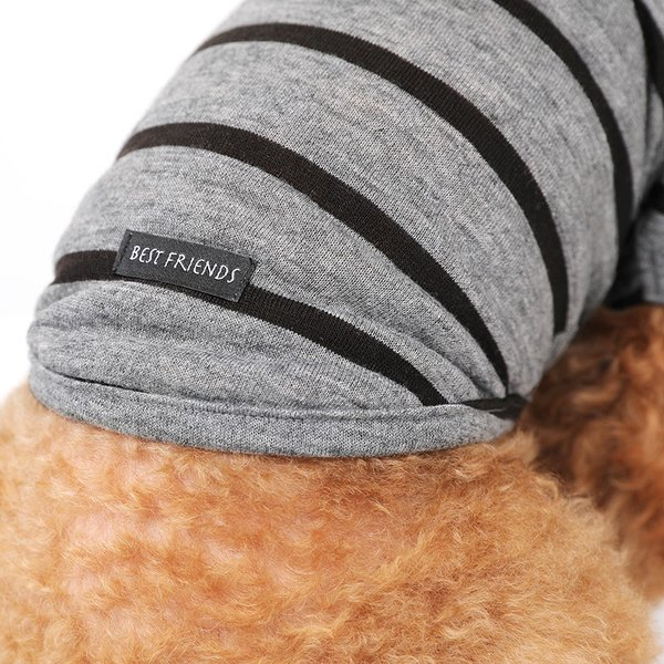 BF ボーダーグレーTシャツ       犬 服 犬の服 ドッグウェア Tシャツ シンプル ライン  薄手 生地 伸縮 伸びる コットン 綿100% ボーダー|best-friends|09